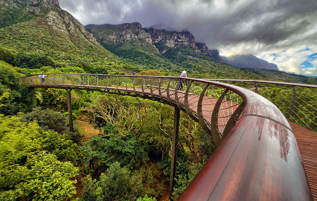 KIRSTENBOSCH NATIONAL BOTANICAL GARDEN cape town